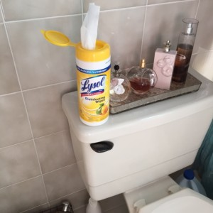 Lysol Disinfectant Spray And Wipes Blogher